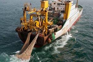 Φρένο από Interpol στην παράνομη αλιεία