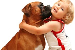 Μαμά, θέλω να μου πάρεις ένα σκυλάκι!