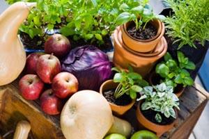 Νέα ανάλυση: Τα βιολογικά τρόφιμα είναι πιο υγιεινά