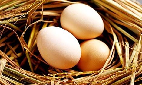 Τα βιολογικά αυγά