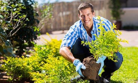 Διώξτε το στρες δουλεύοντας στον κήπο σας