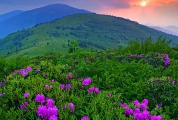 Φύση, μία ανεξάντλητη πηγή δημιουργίας