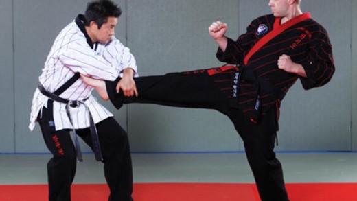 Hapkido, μία από τις σπουδαίες πολεμικές τέχνες της Κορέας
