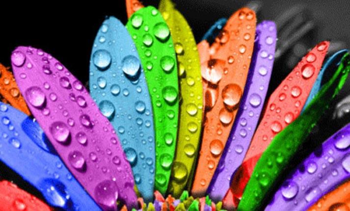 Η επίδραση των χρωμάτων στα συναισθήματα και τις αποφάσεις μας
