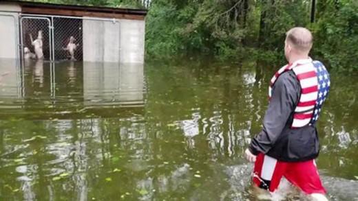 Ήρωας εθελοντής σώζει 6 σκυλιά εν μέσω πλημμύρας στη Βόρεια Καρολίνα!