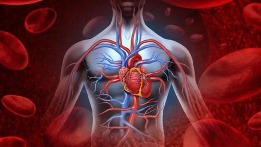 Καρκίνος της καρδιάς, μύθος ή πραγματικότητα;