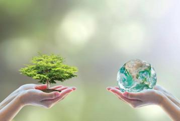Μελέτη για τη WWF: Εννέα στους δέκα Έλληνες ανησυχούν για το περιβάλλον