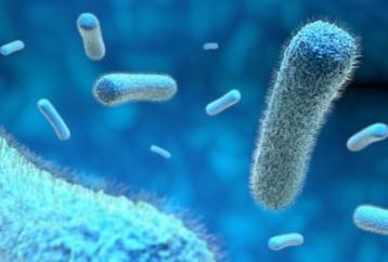 Μια μικροβιακή «Κιβωτό του Νώε» προτείνουν επιστήμονες, για να προστατευθεί η παγκόσμια υγεία στο μέλλον
