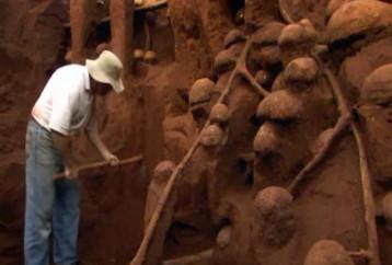 Ο θαυμαστός κόσμος μιας Μυρμηγκοφωλιάς