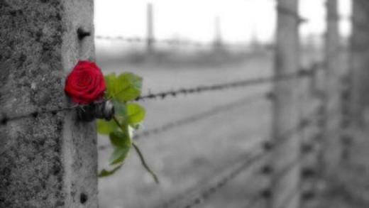 Οι διαφορές ανάμεσα στην αγάπη και την εμμονή