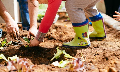 Οικολογικά σχολεία στην Ελλάδα και η σημασία τους στην ανάπτυξη οικολογικής συνείδησης