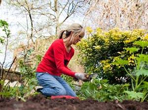 Οικολογικές συμβουλές για τη φροντίδα του κήπου σας