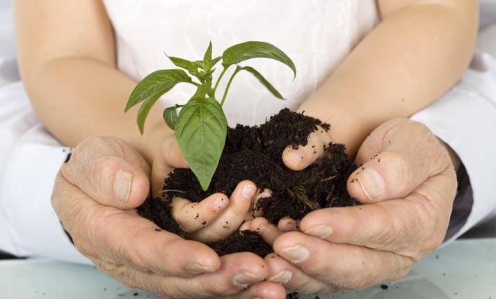 Οικολογική συνείδηση σε νέους και νέες