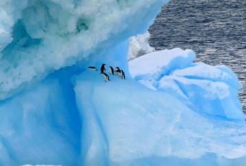Περίεργα στοιχεία για την Ανταρκτική