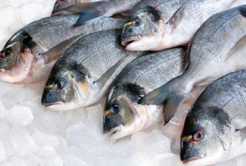 Ψάρι: πολύτιμος σύμμαχος για την υγεία μας