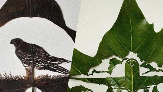 Τέχνη πάνω σε… φύλλα!