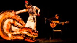 valte_to_flamenco_sti_zoi_sas_featured
